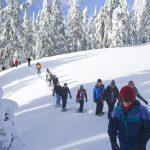 Schneeschuhwandern für Anfänger – ein Leitfaden