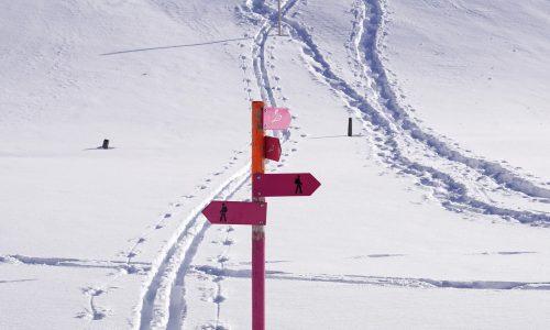 Spuren Schneeschuhe und Skier